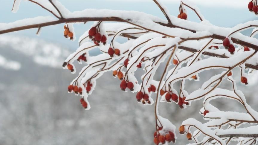 inverno.